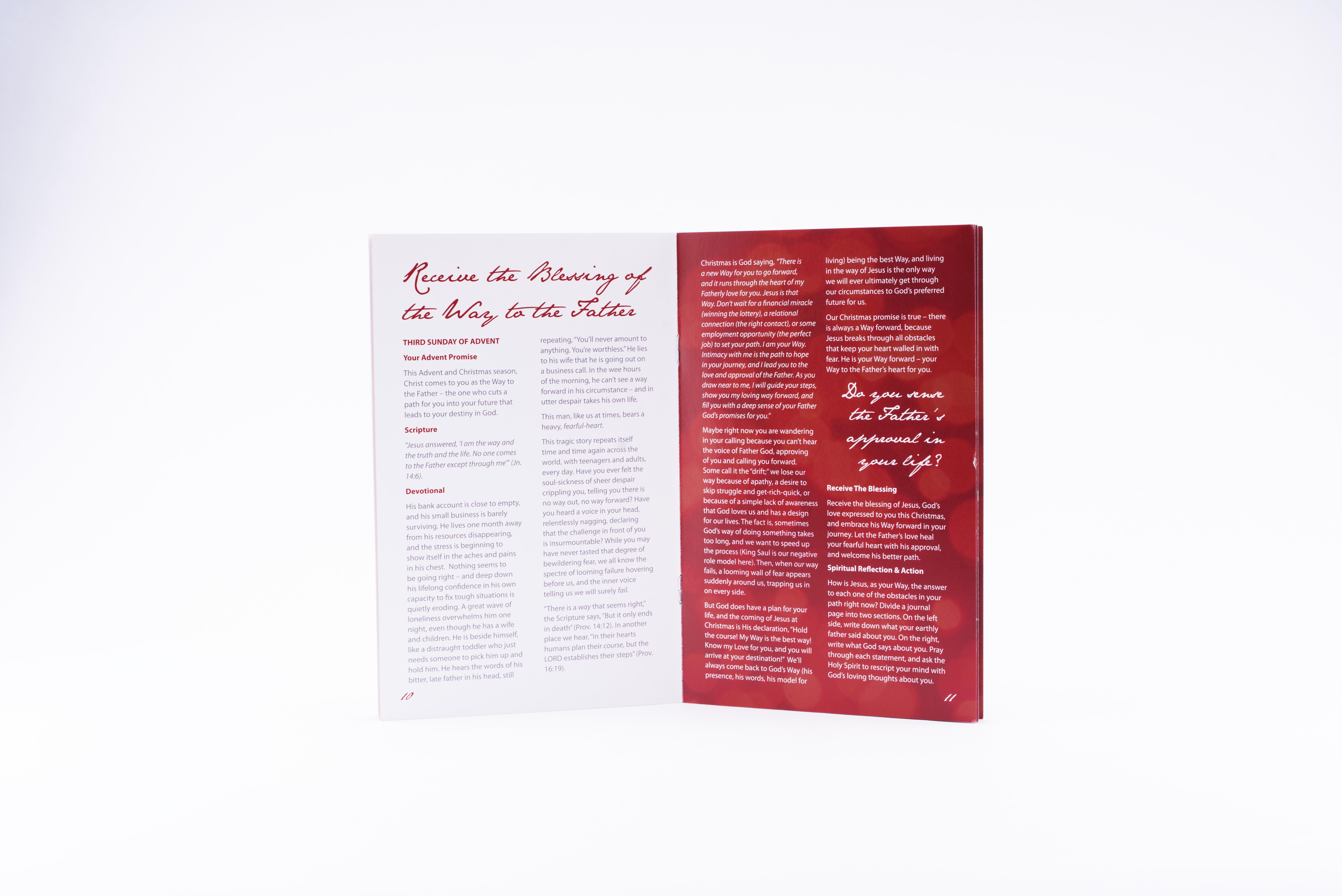 Receive The Blessing Christmas Package - Vineyard Digital
