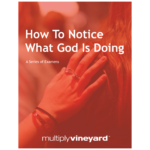Multiply Vineyard: How To Notice What God Is Doing (Examens)
