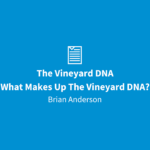 The Vineyard DNA   What Makes Up The Vineyard DNA?