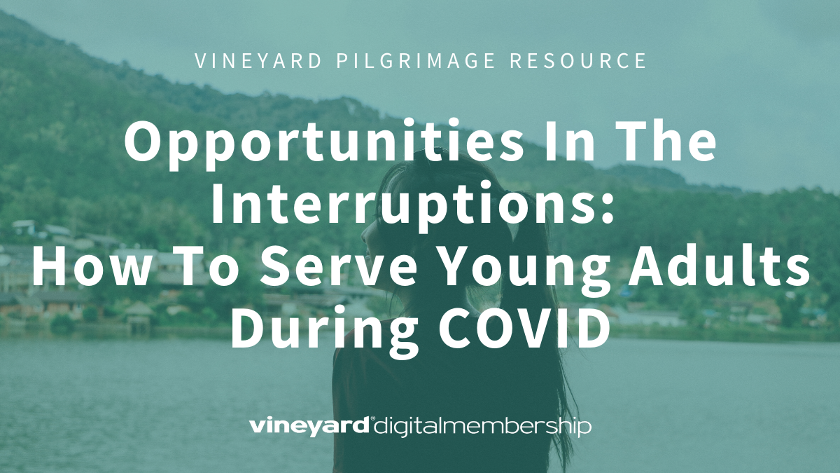 VDM Opportunities In The Interruption COVID